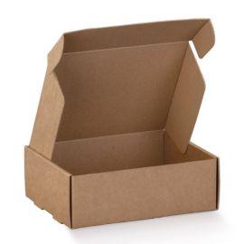 Greito uždarymo dėžutė Avana Fast