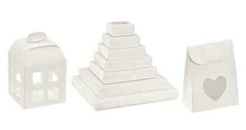 Dėžutės baltos (Tela)